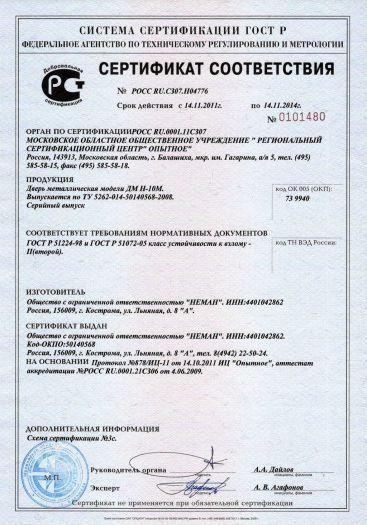 dver-metallicheskaya-modeli-dm-n-10m